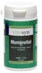 Metapharm Vitosyn Mumjovital Συμπλήρωμα Διατροφής με Mumjo & Βιταμίνες, 60 caps