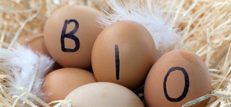 Πρέπει το παιδί μου να τρώει βιολογικά προϊόντα;