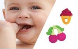 Οδοντοφυΐα