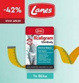 Generic / Lanes / 230420