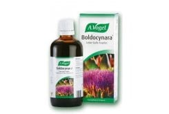 A. Vogel BOLDOCYNARA, 50ml