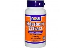 Now Elderberry Extract 500 mg (10
