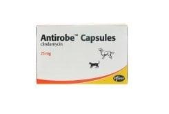 Pfizer Antirobe 25 mg για τη Θεραπεία Μολυσμένων Τραυμάτων, Αποστημάτων & Λοιμώξεων της Στοματικής Κοιλότητας & των Δοντιών των Σκύλων & των Γάτων, 16 caps