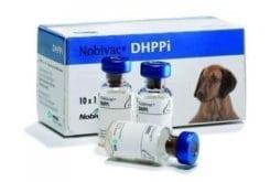 MSD Nobivac DHPPi Ενέσιμο Διάλυμα για την Ενεργό Ανοσοποίηση των Σκύλων, 1vial x 1ml