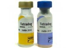 """Εικόνα του """"Merial Tetradog Εμβόλιο για Σκύλους, 1 x 1ml """""""