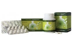 Pharmaq Mastiha Therapy Συμπλήρωμα Μαστίχας Χίου 350mg, 90 caps