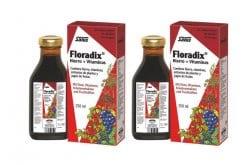 2 x Power Health Floradix Γυναικείο Τονωτικό Συμπλήρωμα, 2 x 250ml