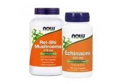 Πακέτο Now για Ενίσχυση του Ανοσοποιητικού & Πρόληψη Κρυολογήματος με Echinacea 400 mg, 100 caps & Rei Shi Mushrooms 270 mg, 100 caps