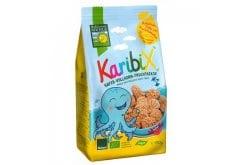Bohlsener Karibix Βιολογικά Μπισκότα Bρώμης, 150gr