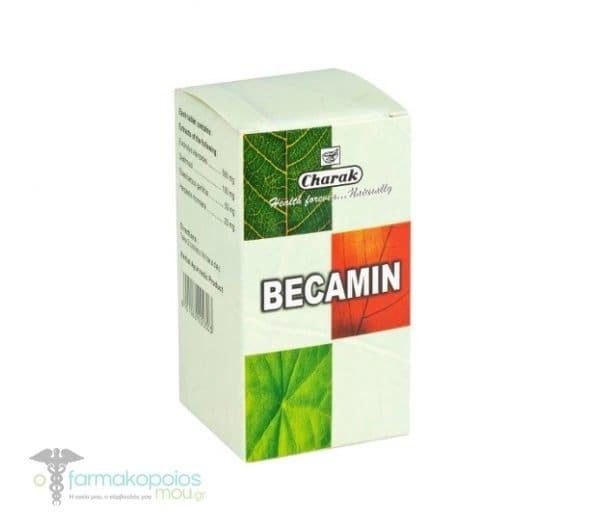 Charak Becamin Συμπλήρωμα Διατροφής για την Καταπολέμηση του Στρες, 100 tabs