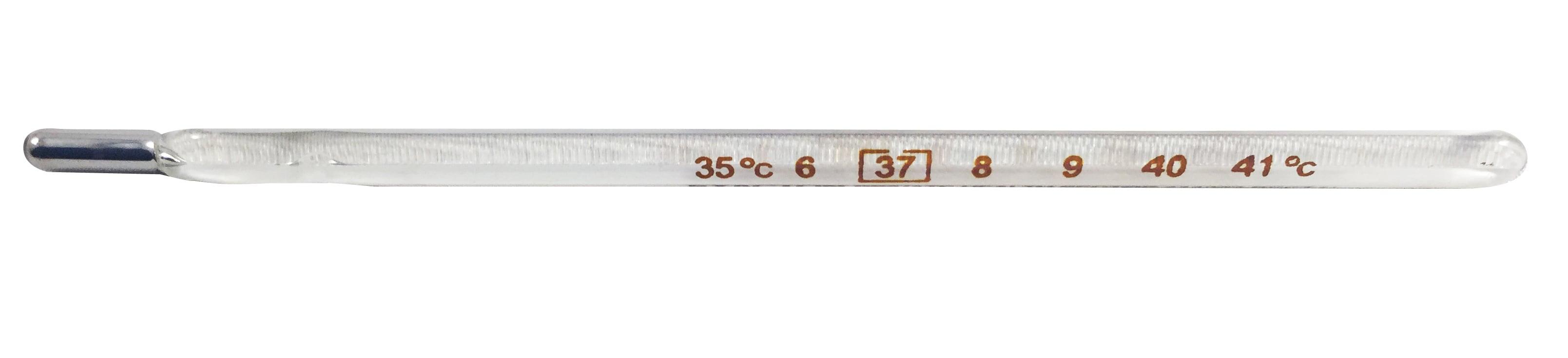 AG Pharm Θερμόμετρο Προισματικό  Απλό 1', 1 τεμάχιο